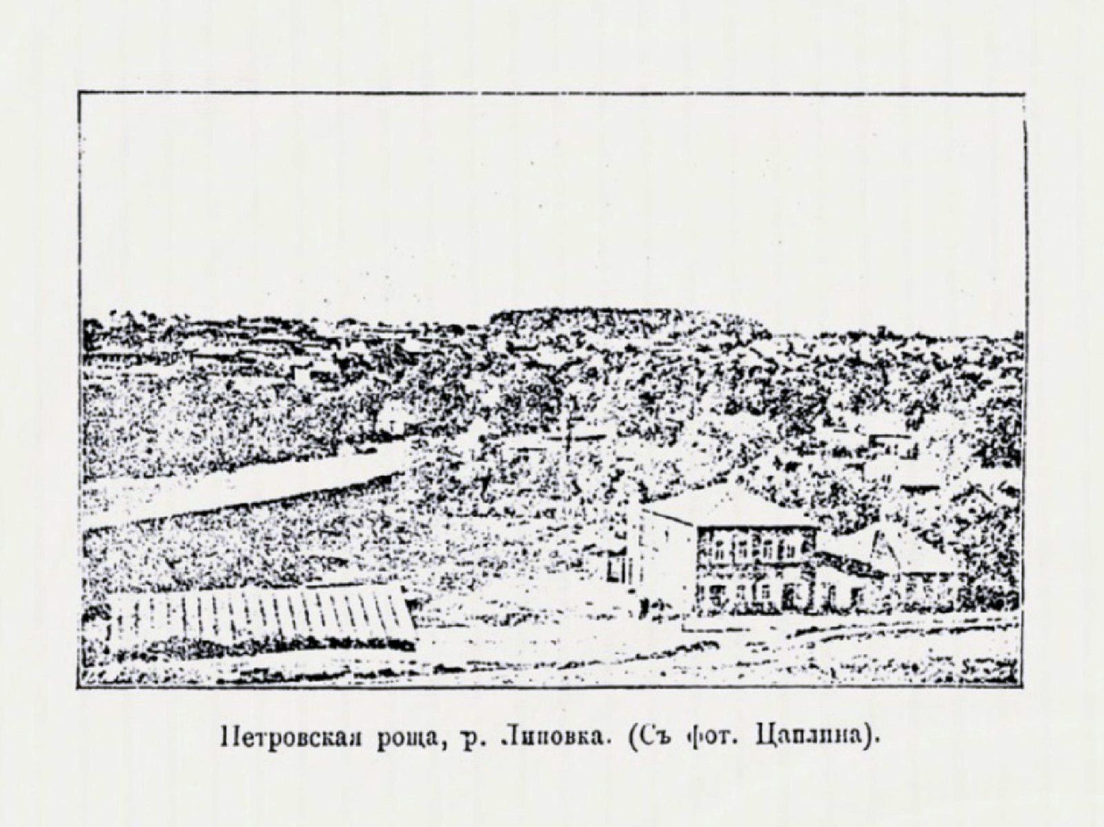 Петровская роща, река Липовка.jpg